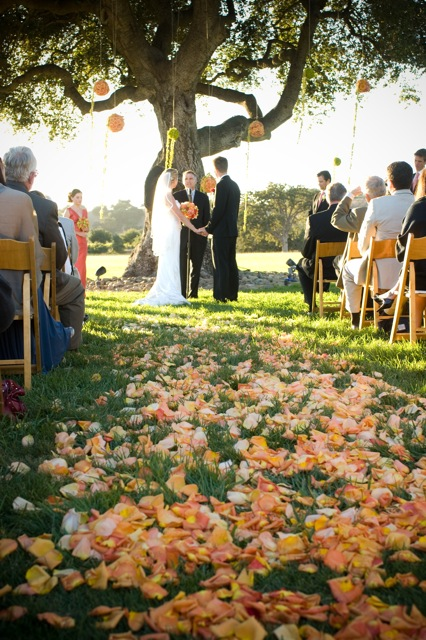 santa barbara wedding, firestone vineyards, rose petal aisle